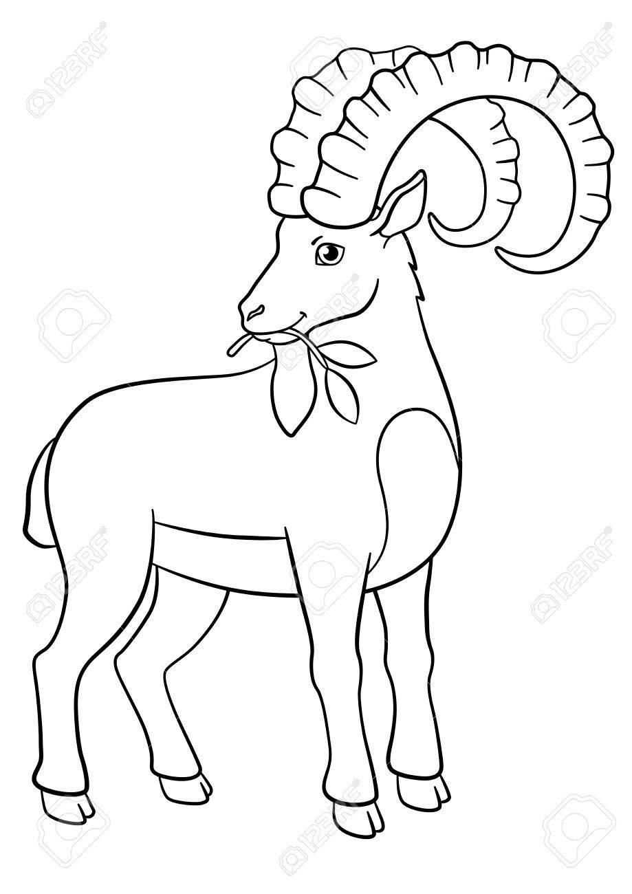 Páginas Para Colorear. Ibex Lindo Con Grandes Cuernos Comen Hojas ...