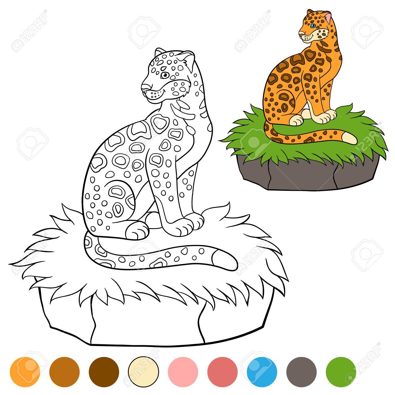Dibujo Para Colorear Con Los Colores. Jaguar Lindo Se Sienta En El ...
