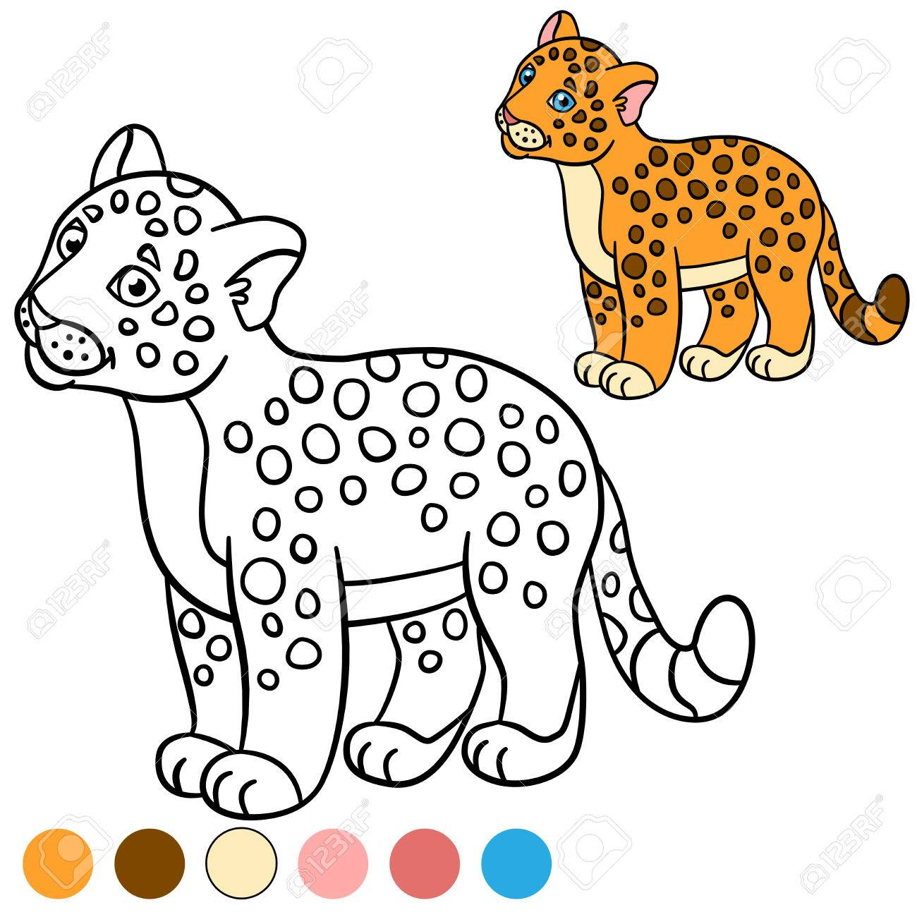 Coloring Page With Colors. Little Cute Baby Jaguar Smiles. Royalty ...