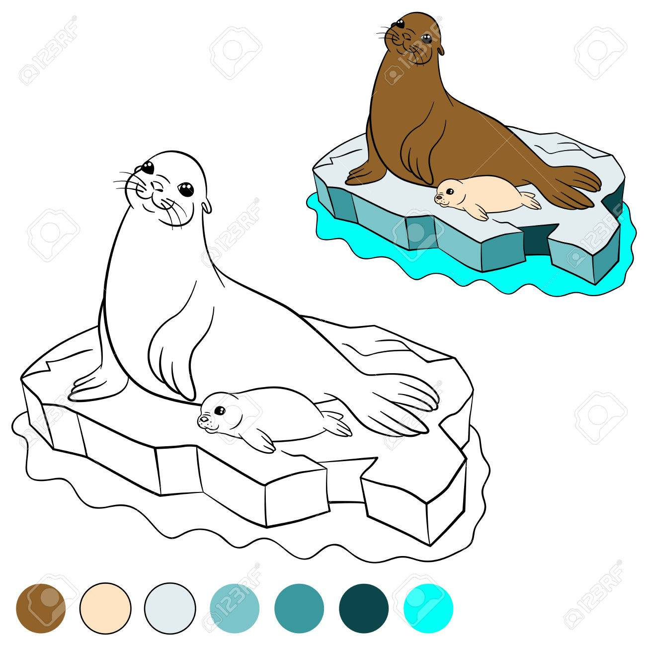 Coloring Page With Colors Mother Fur Seal Her Little Cute White Coated Baby