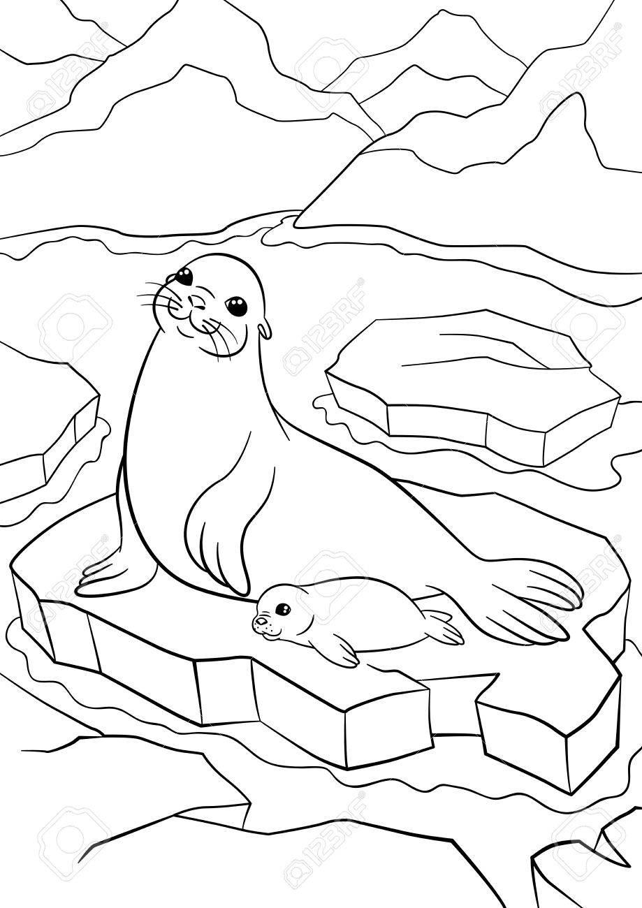 Atemberaubend Süße Meer Tier Malvorlagen Bilder - Druckbare ...