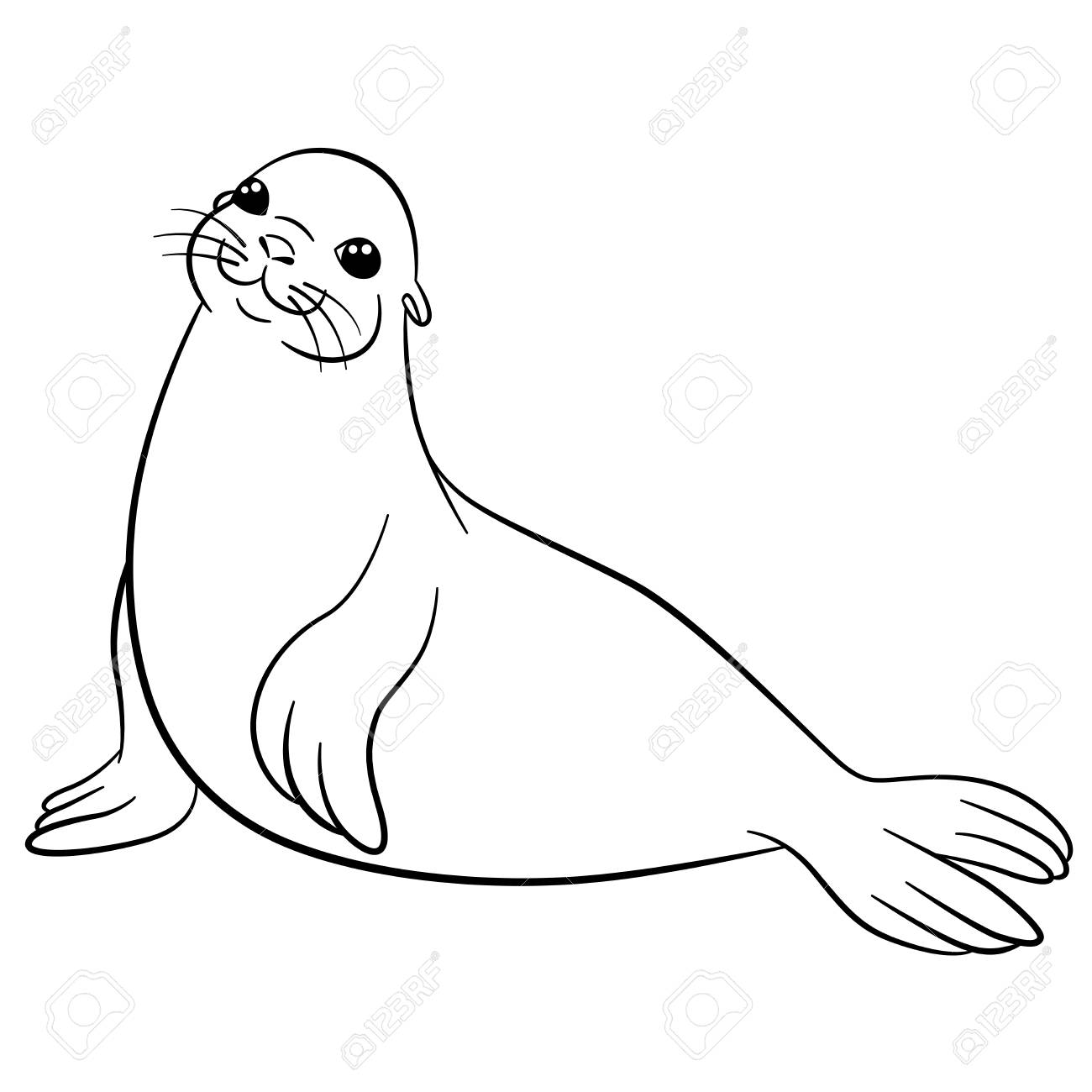 Coloring Pages Little Cute Fur Seal Lays And Smiles Royalty Free