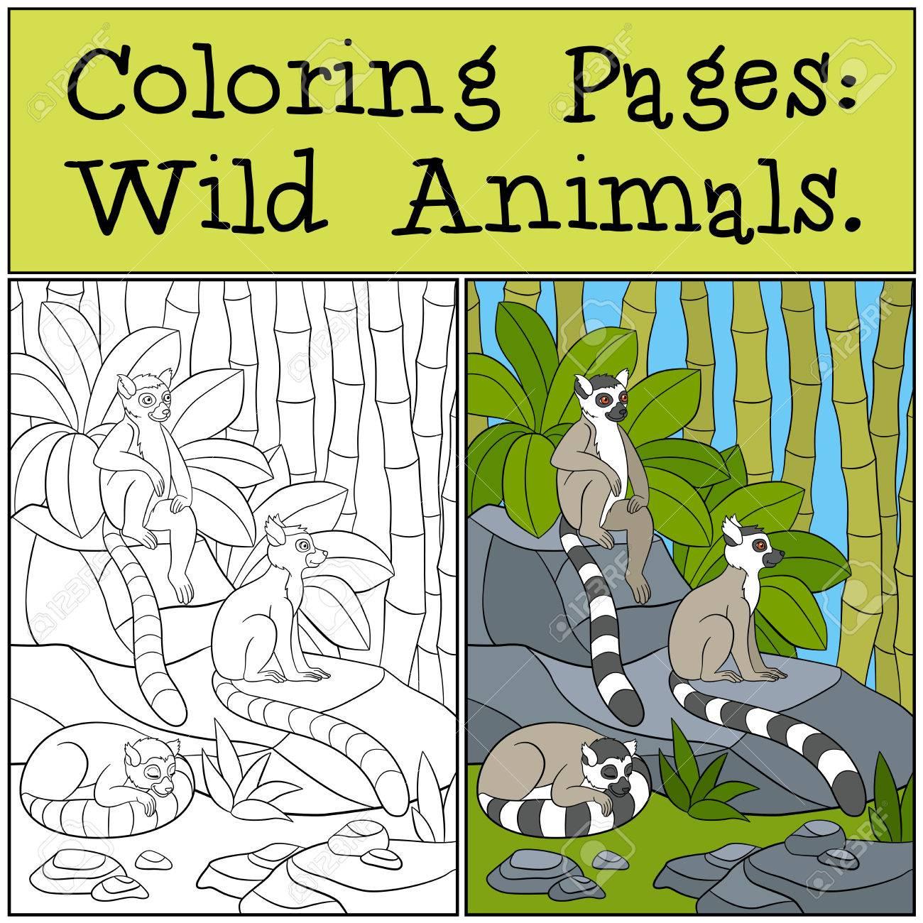 Páginas Para Colorear: Animales Salvajes. Tres Pequeños Lémures ...
