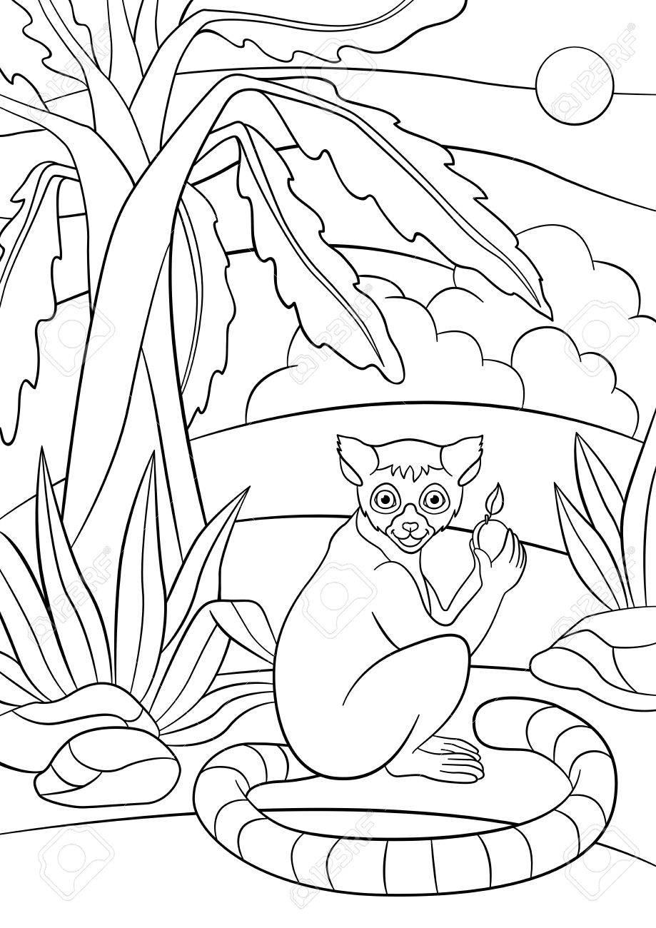 Páginas Para Colorear. El Pequeño Lemur Lindo Sostiene Una Fruta En ...