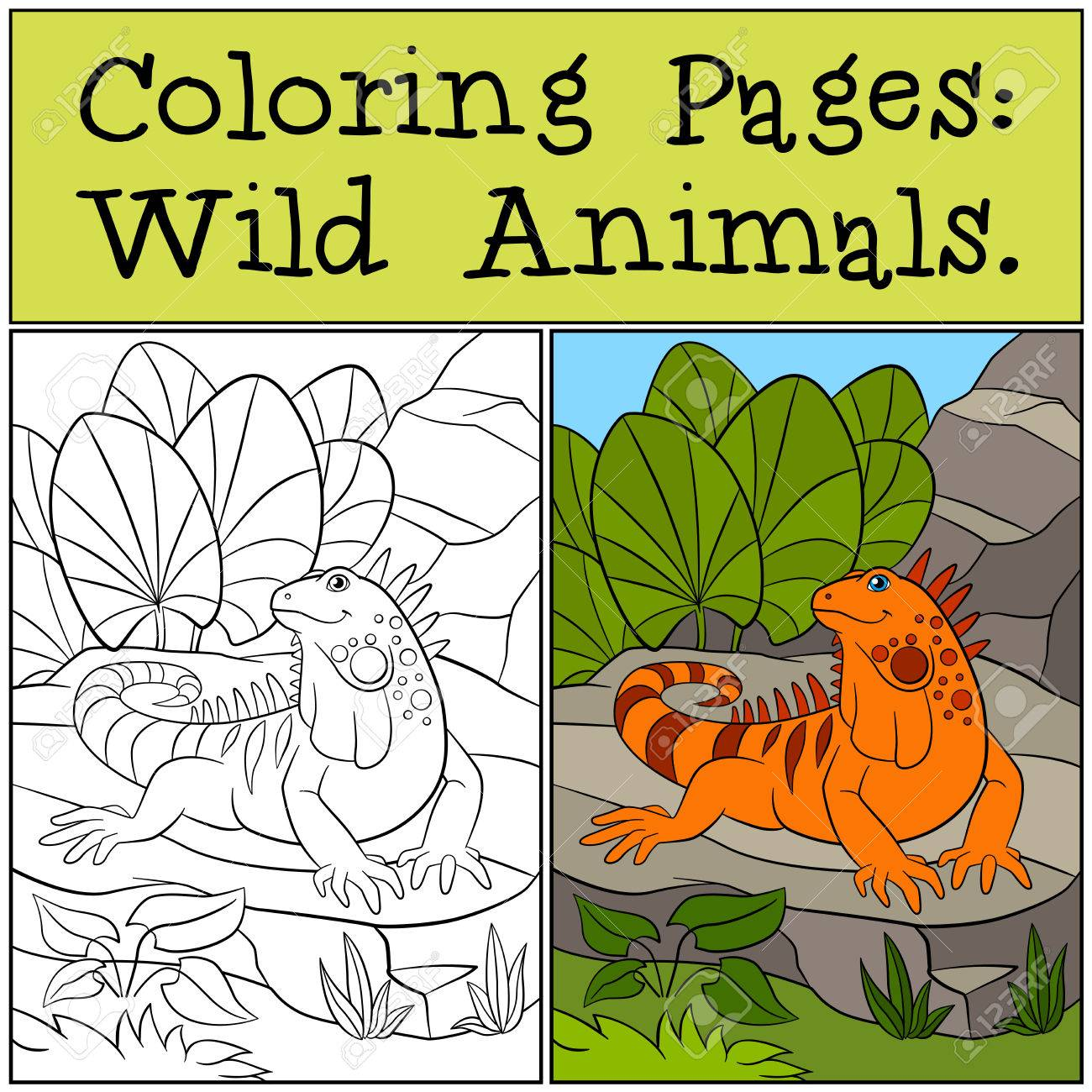 Coloring Pages: Wild Animals. Cute Orange Iguana Sits On The ...