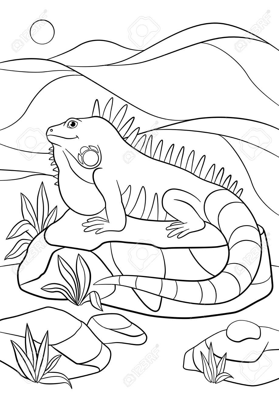 Páginas Para Colorear Iguana Linda Se Sienta En La Roca Y Sonrisas