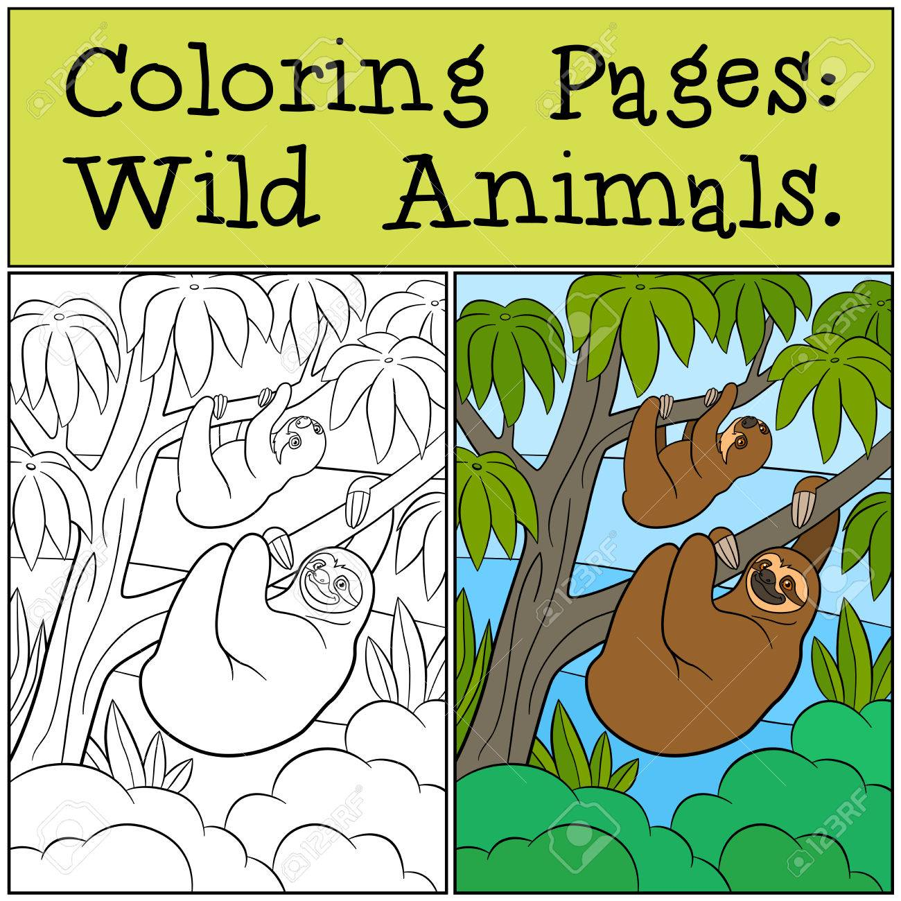 Coloring Pages: Wild Animals. Mother Sloth And Her Little Cute ...