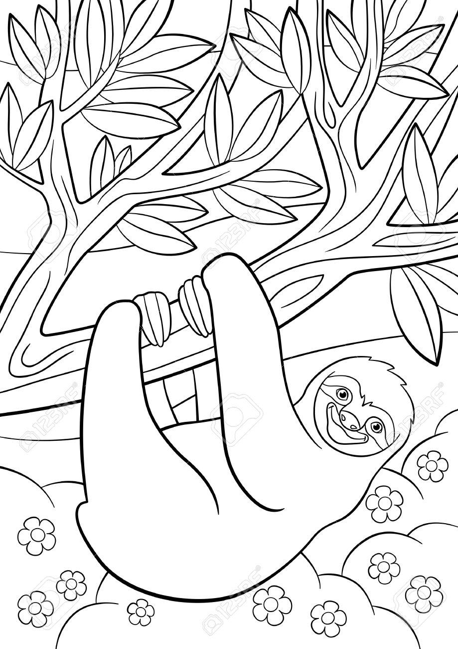 Páginas Para Colorear. Pereza Perezosa Linda Cuelga En El árbol Y ...
