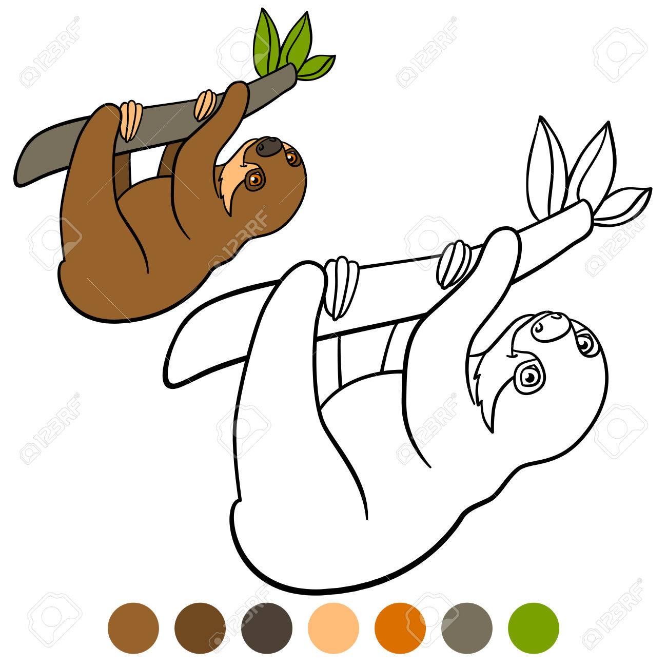 Dibujo Para Colorear. Poco Pereza Linda Bebé Cuelga De La Rama De Un ...