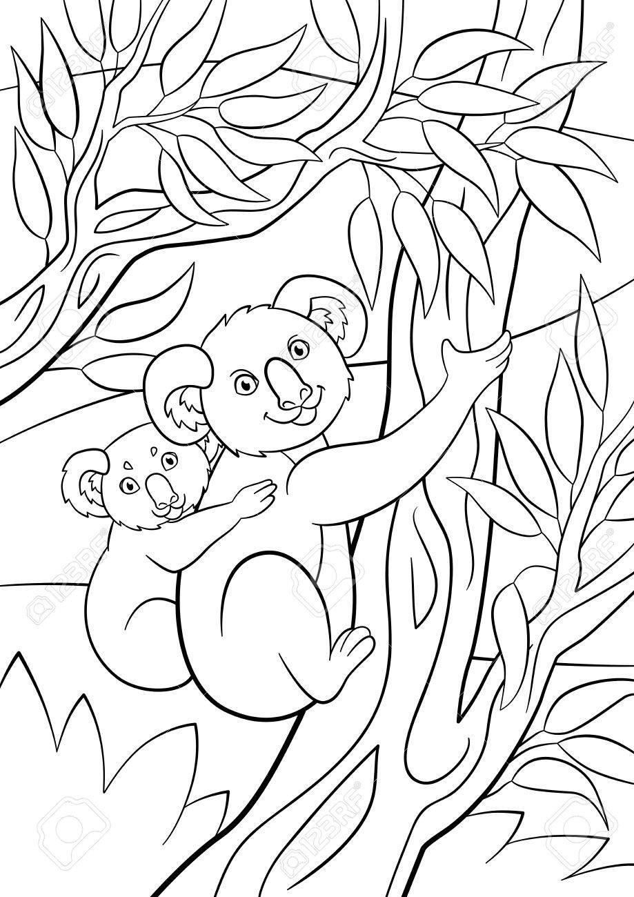 Páginas Para Colorear. Madre Koala Se Sienta En La Rama De Un árbol ...