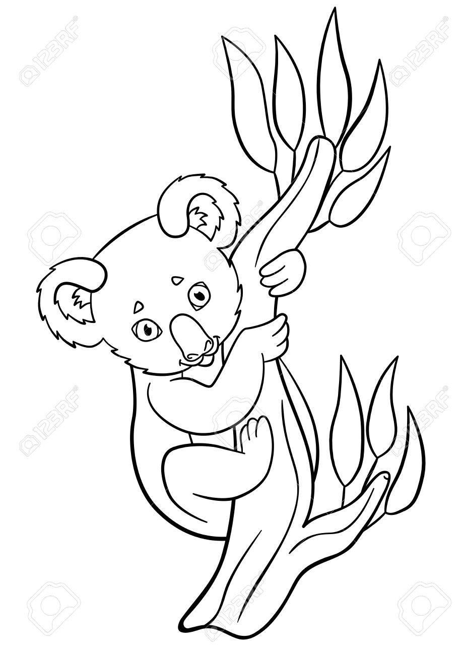 Coloriage Petit Bébé Koala Mignon Est Assis Sur La Branche D Arbre Et De Sourires