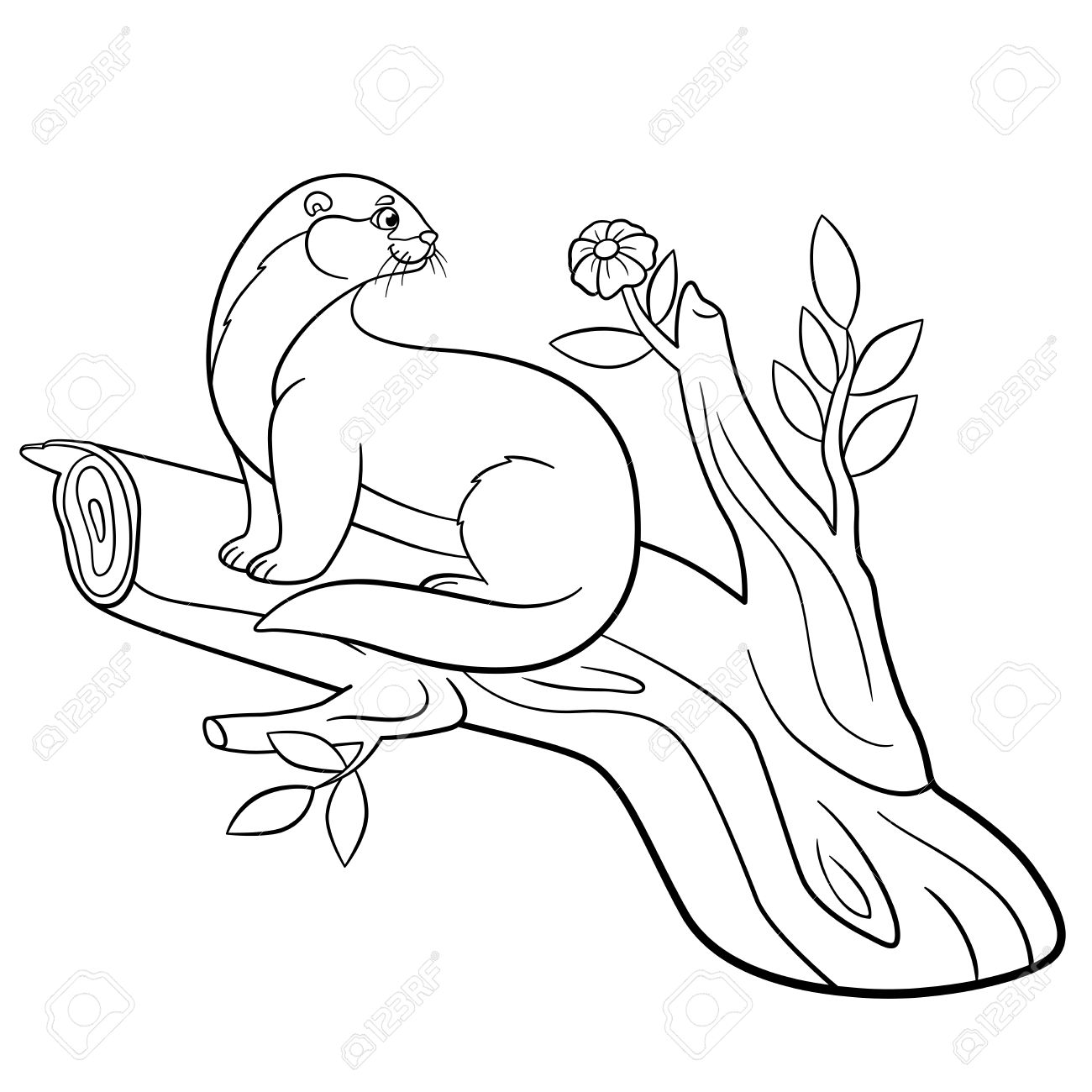 Coloring Pages Little Cute Otter Sits On The Tree Branch And