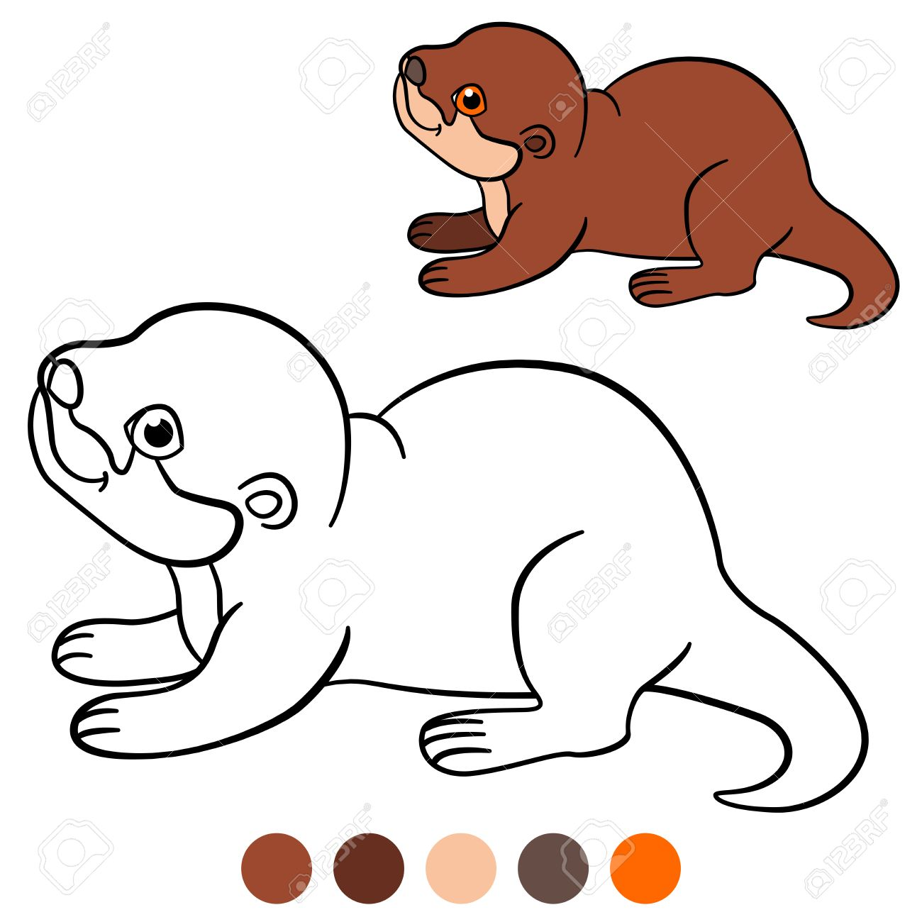 Coloring Page. Little Cute Baby Otter Stands And Smiles. Stock Vector    62916165