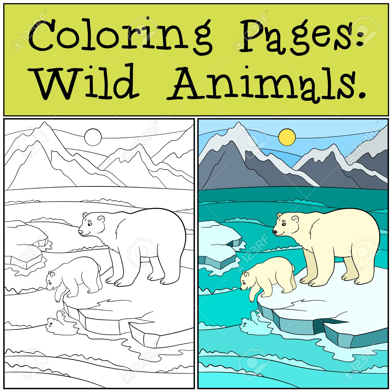Coloring Pages Wild Animals Mother Polar Bear Stands On The Ice Floe With