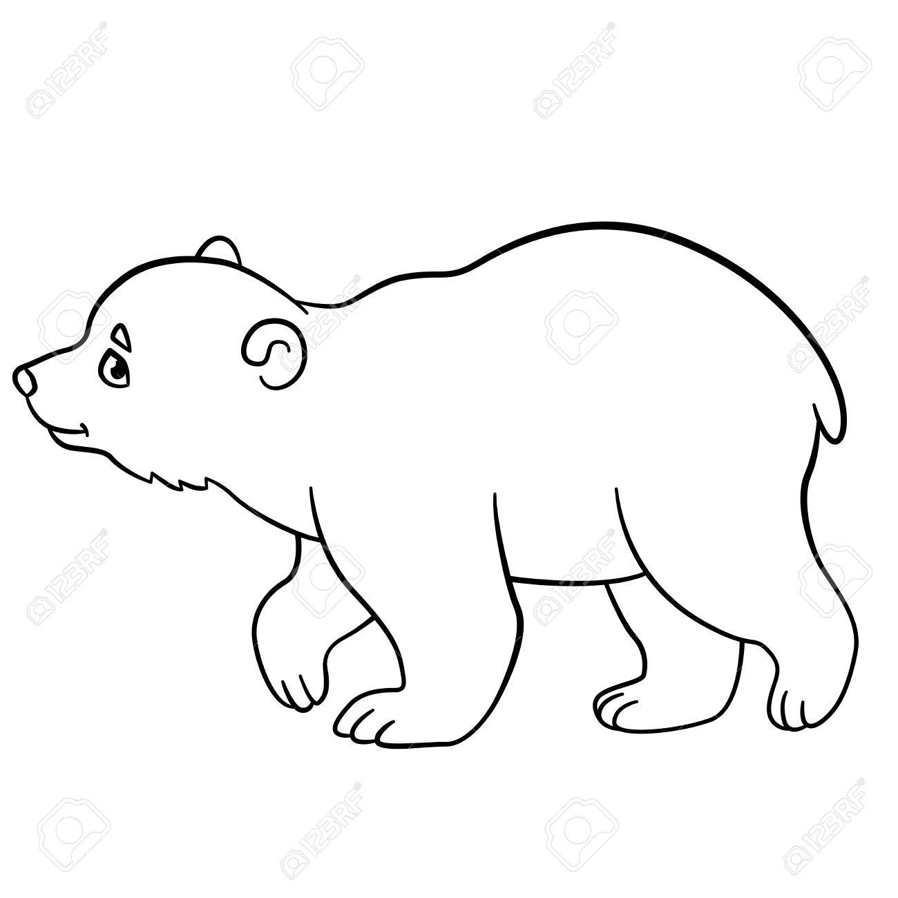 Páginas Para Colorear. El Pequeño Oso Polar Lindo Bebé Camina Y ...