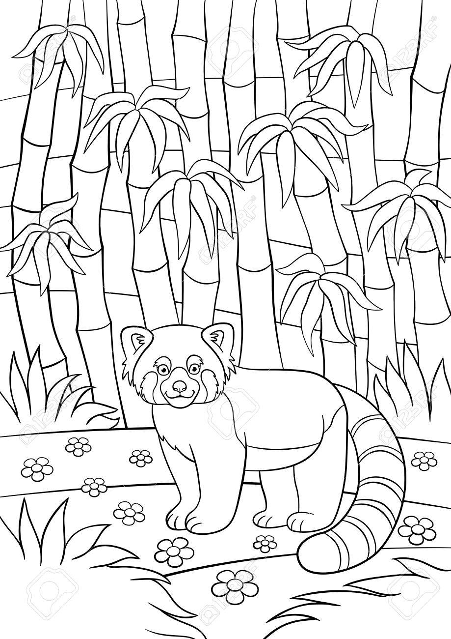 Coloring Pages. Little Cute Red Panda Stands In The Bamboo Forest ...