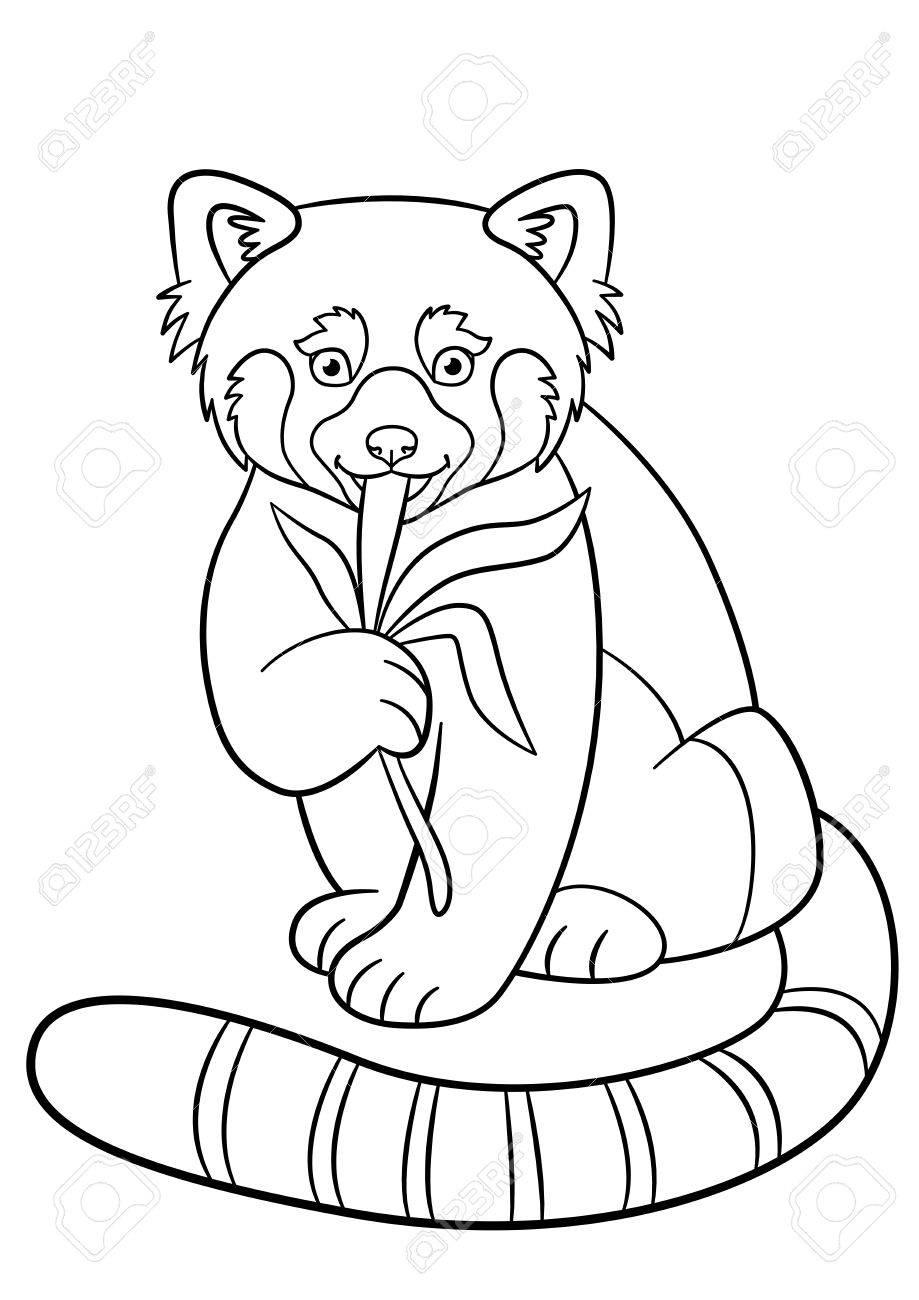 Erfreut Malvorlagen Panda Bilder - Beispiel Business Lebenslauf ...