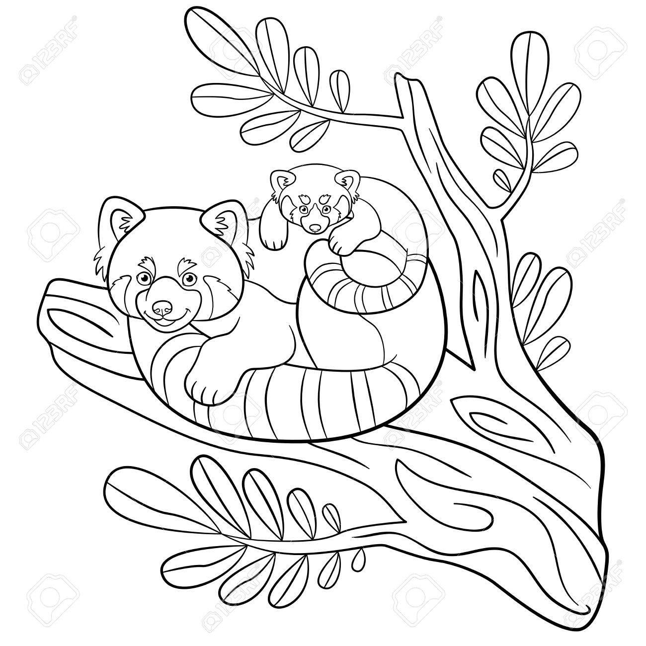 Páginas Para Colorear. Madre Panda Rojo Se Sienta En La Rama De Un ...