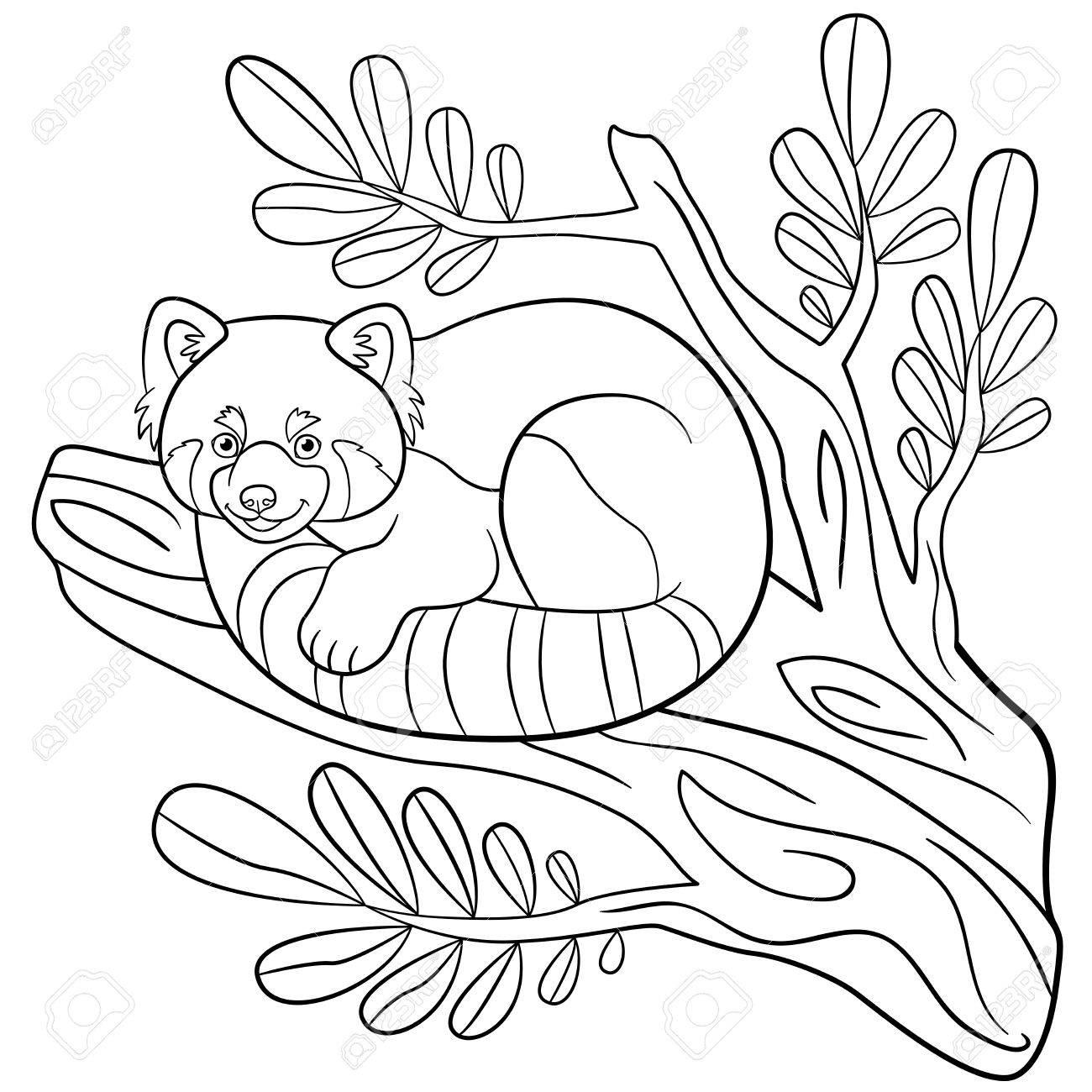 Malvorlagen. Kleine Süße Rote Panda Sitzt Auf Dem Ast Und Lächelt