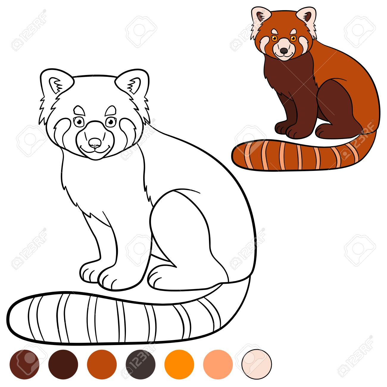 Coloring Page Red Panda Little Cute Red Panda Sits And Smiles