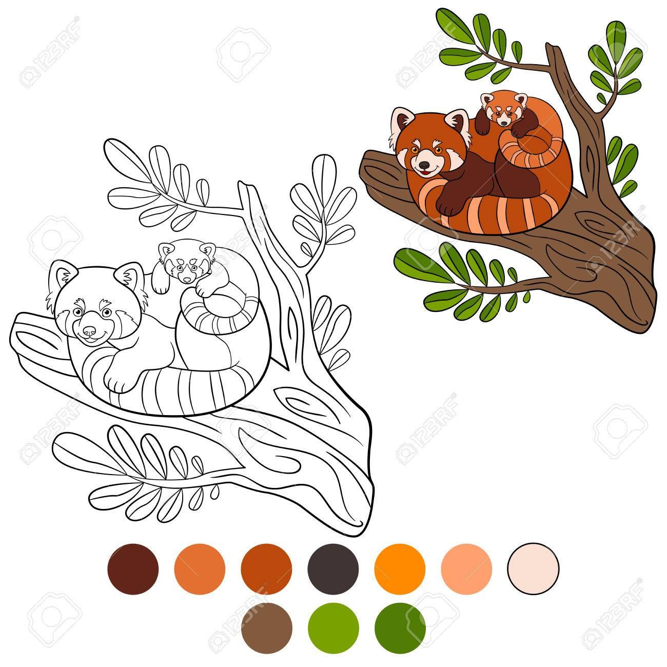 Malvorlage: Roter Panda. Mutter Roter Panda Mit Ihrem Kleinen Süßen ...