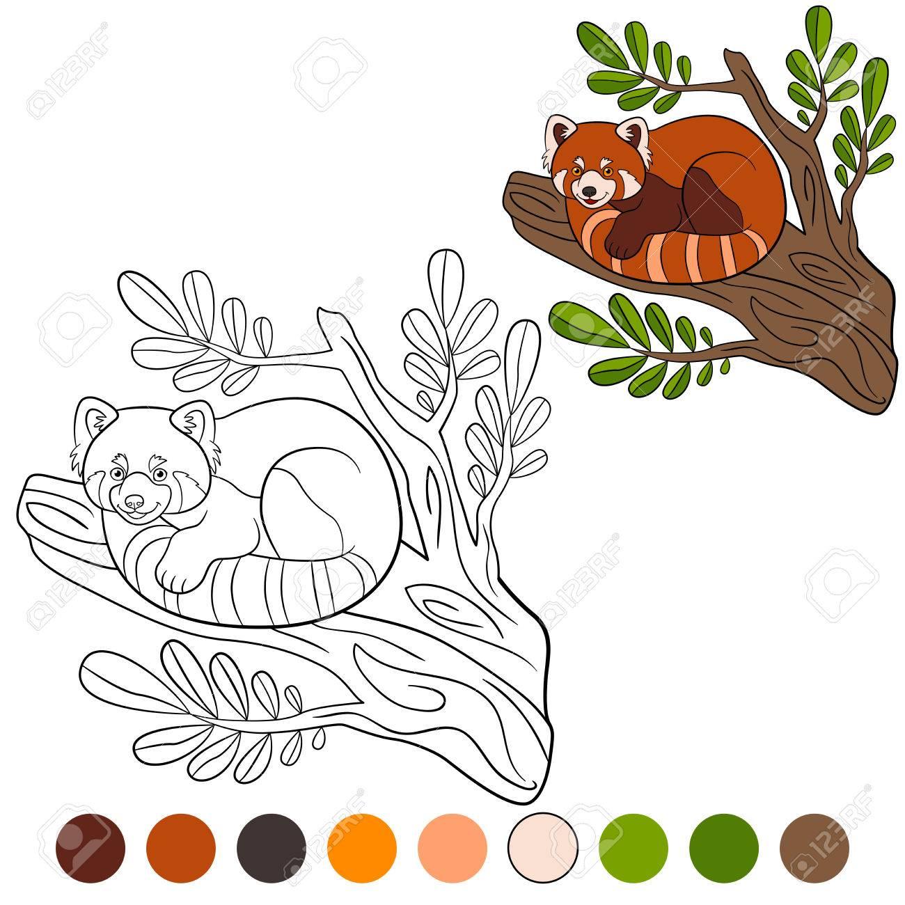 Dibujo Para Colorear: Panda Rojo. Pequeño Panda Rojo Lindo En La ...