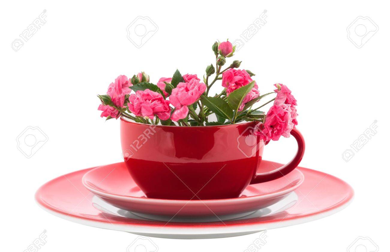 red coffee cups with pink roses flowers isolated on white stock