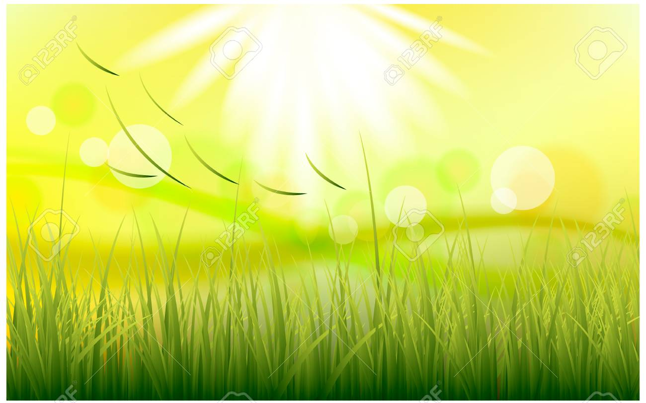 Sunny natural background with vector sun and grass. - 61023717