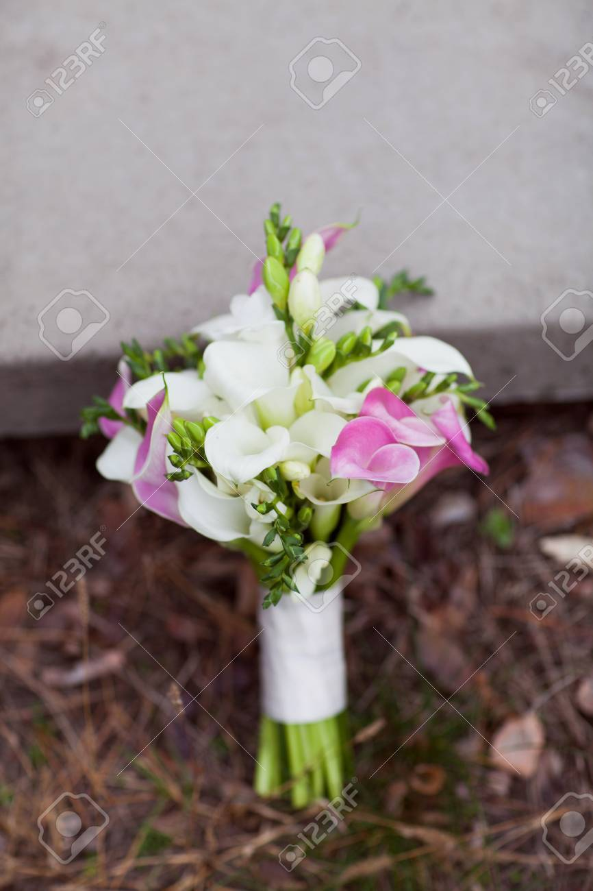 Pink And White Bridal Bouquet Of Calla Lilies Stock Photo Picture