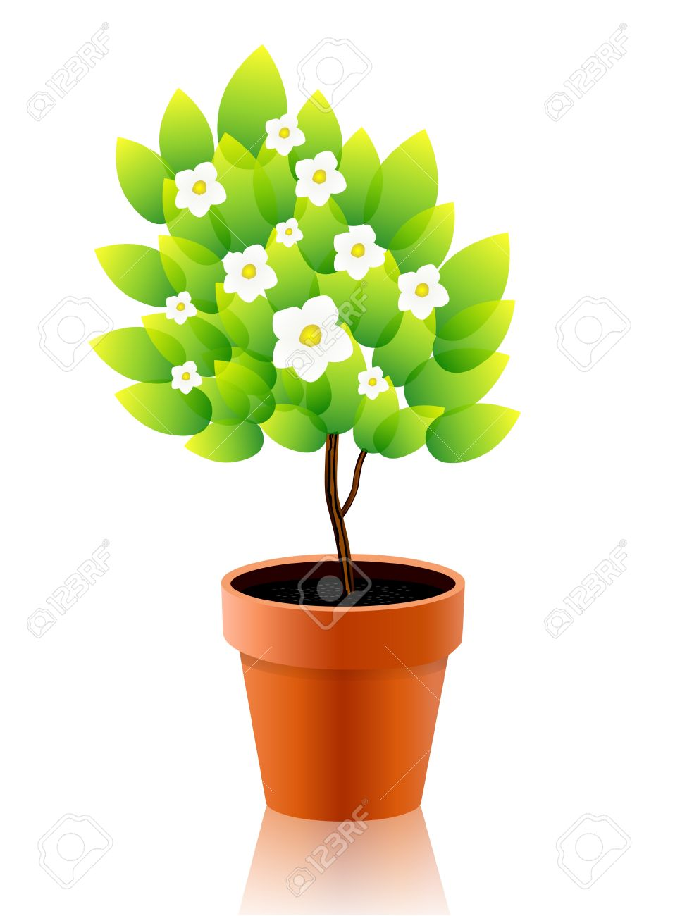 Vector illustration of growing plant with flower in pot Stock Vector - 9231797