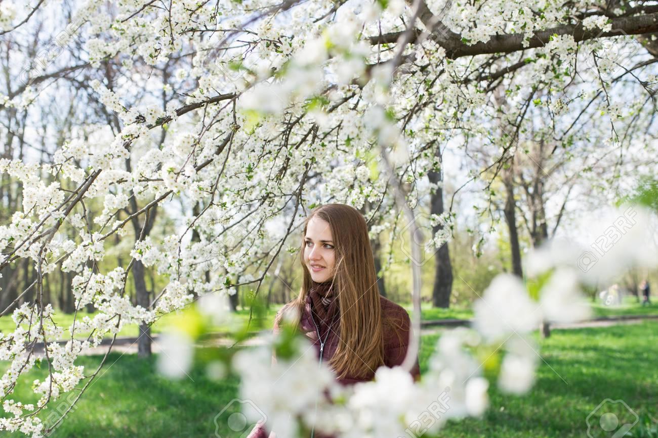 5e5206428993 Kaukasischen Mädchen mit langen braunen Haaren in den blühenden Garten.  Weiße Kirschblüten Standard-Bild