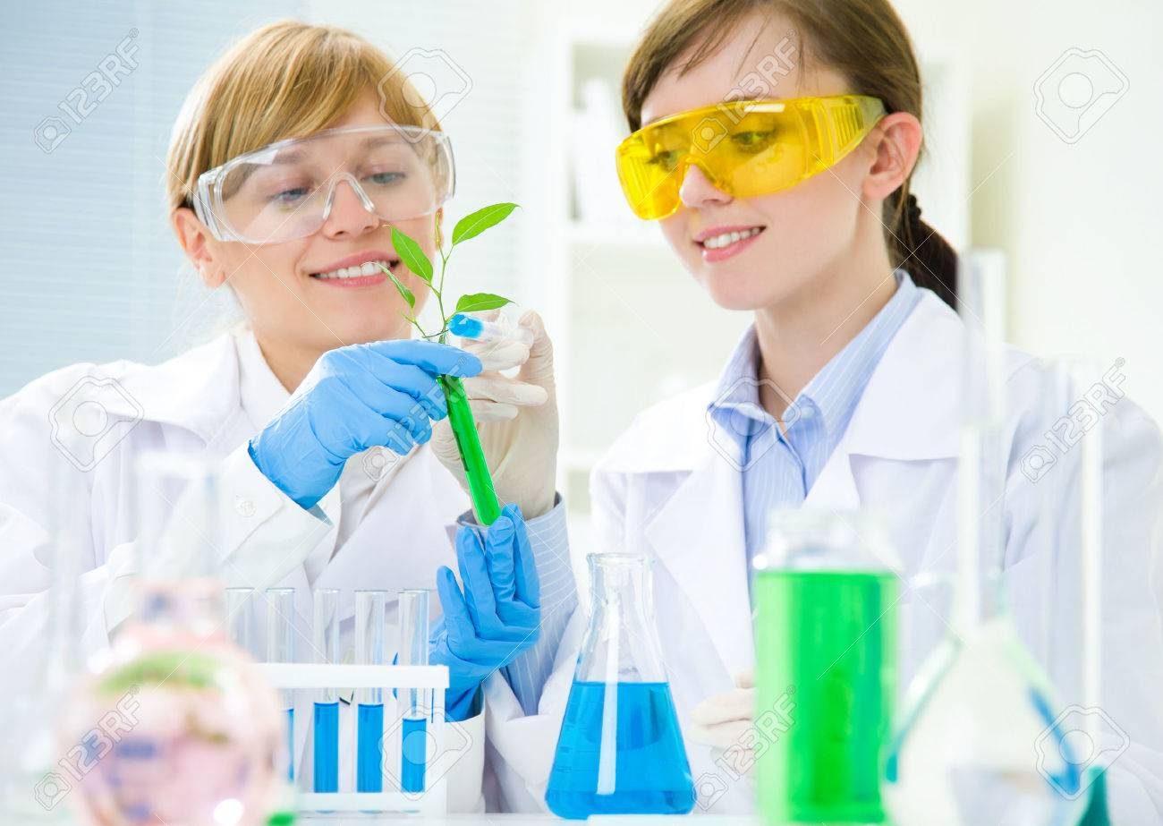 biotechnology scientists Stock Photo - 24807185