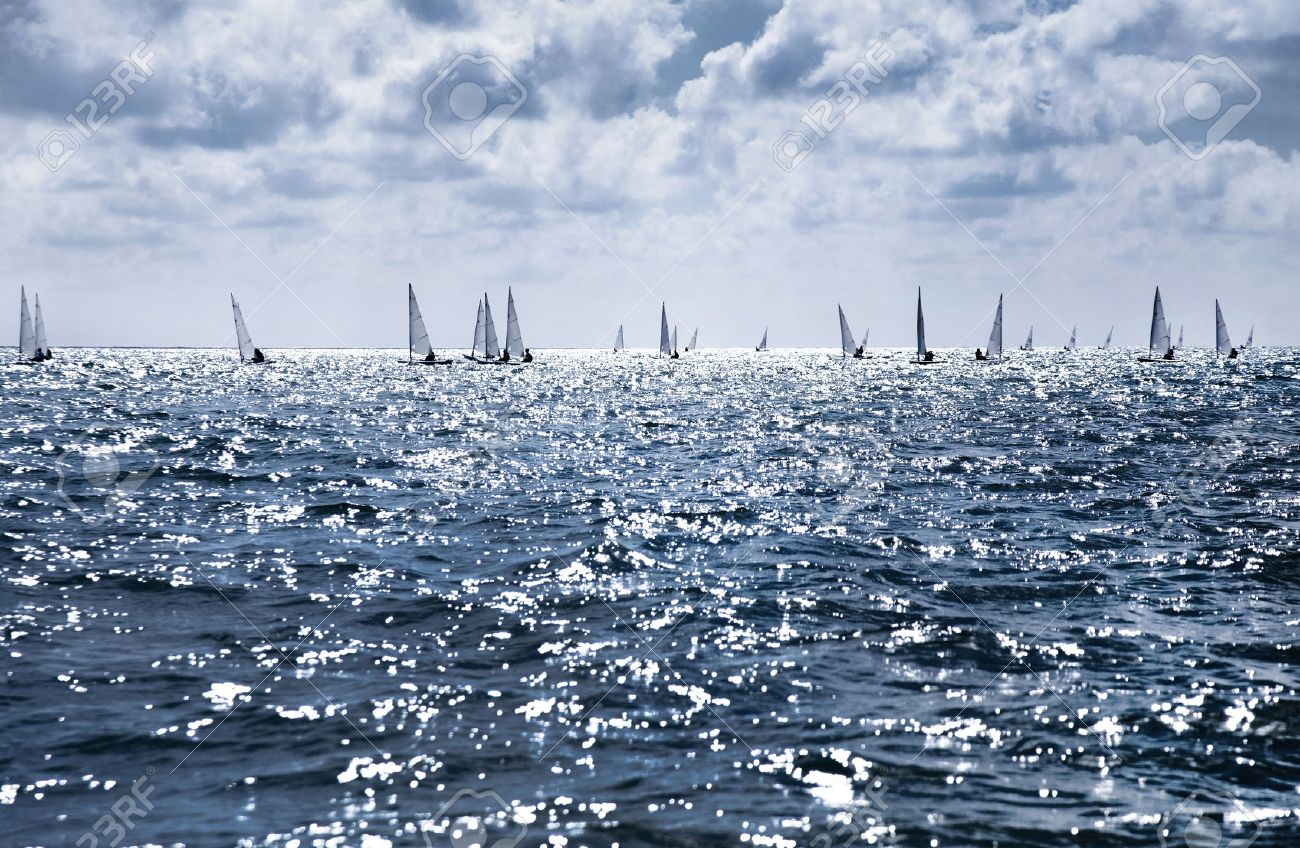 beautiful landscape of the sea with many sails on the horizon Stock Photo - 42669425