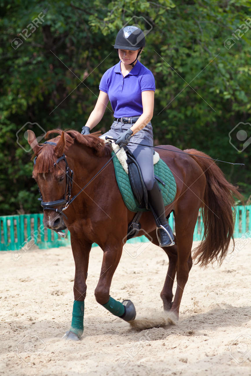 Portrait of young horsewoman on red horse - 166657906