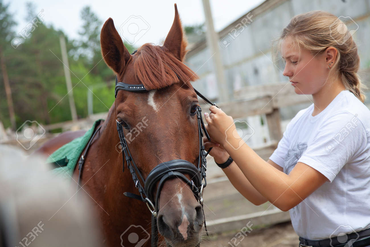 Young girl caring for a horse on a farm - 166657160