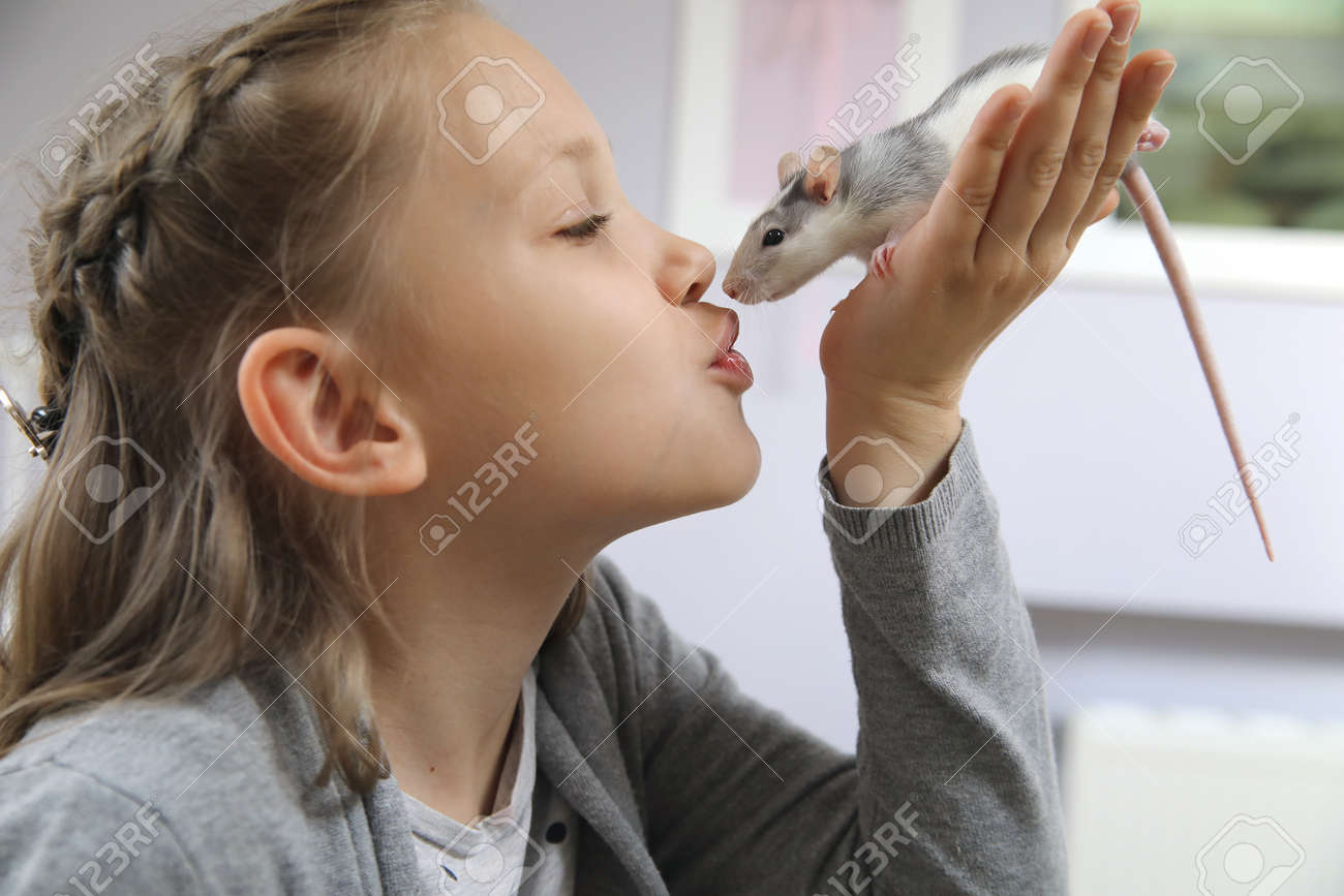 Little girl cute plays and makes friends with a white tamed mouse at home. - 167908404
