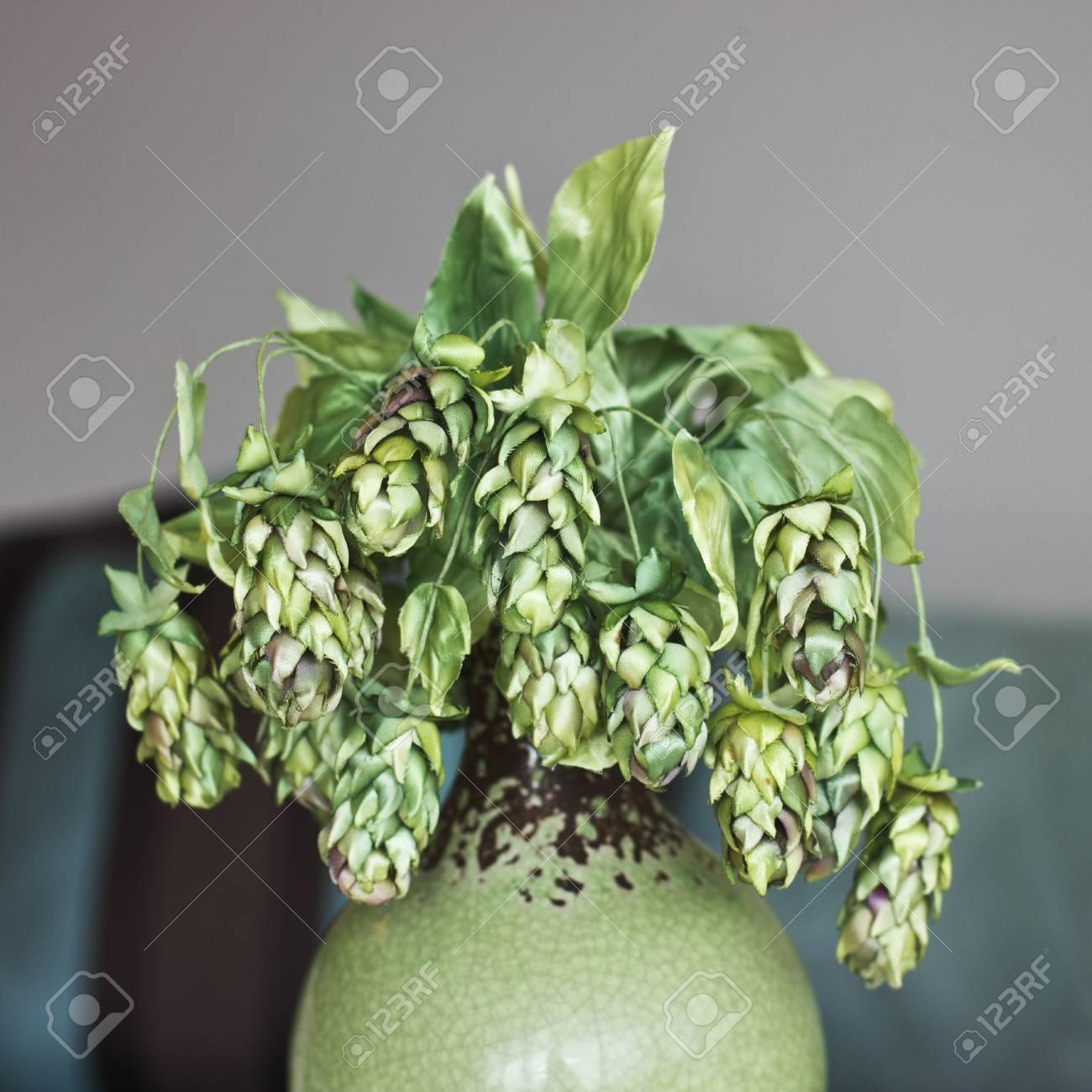 Cones of green hops artificial silk flowers in interior stock photo cones of green hops artificial silk flowers in interior stock photo 96679600 mightylinksfo