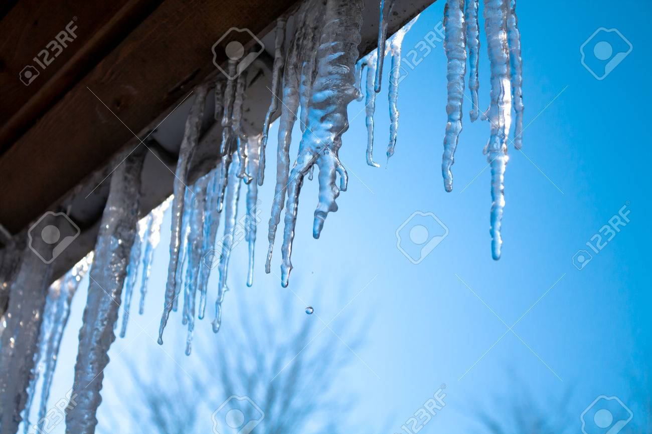 beautiful icicles glint in the sun against the blue sky - 22508023