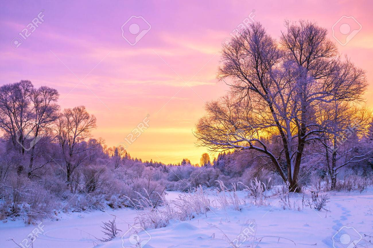 beautiful winter landscape with sunset and the forest - 35096812