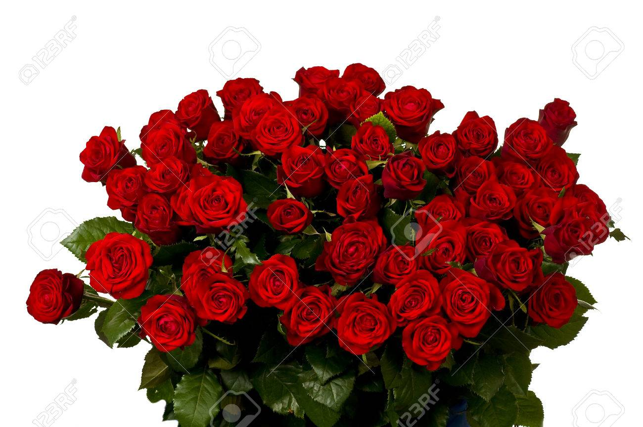 Red roses a huge bouquet of flowers royalty free stok fotoraf red roses a huge bouquet of flowers stok fotoraf 33000662 izmirmasajfo