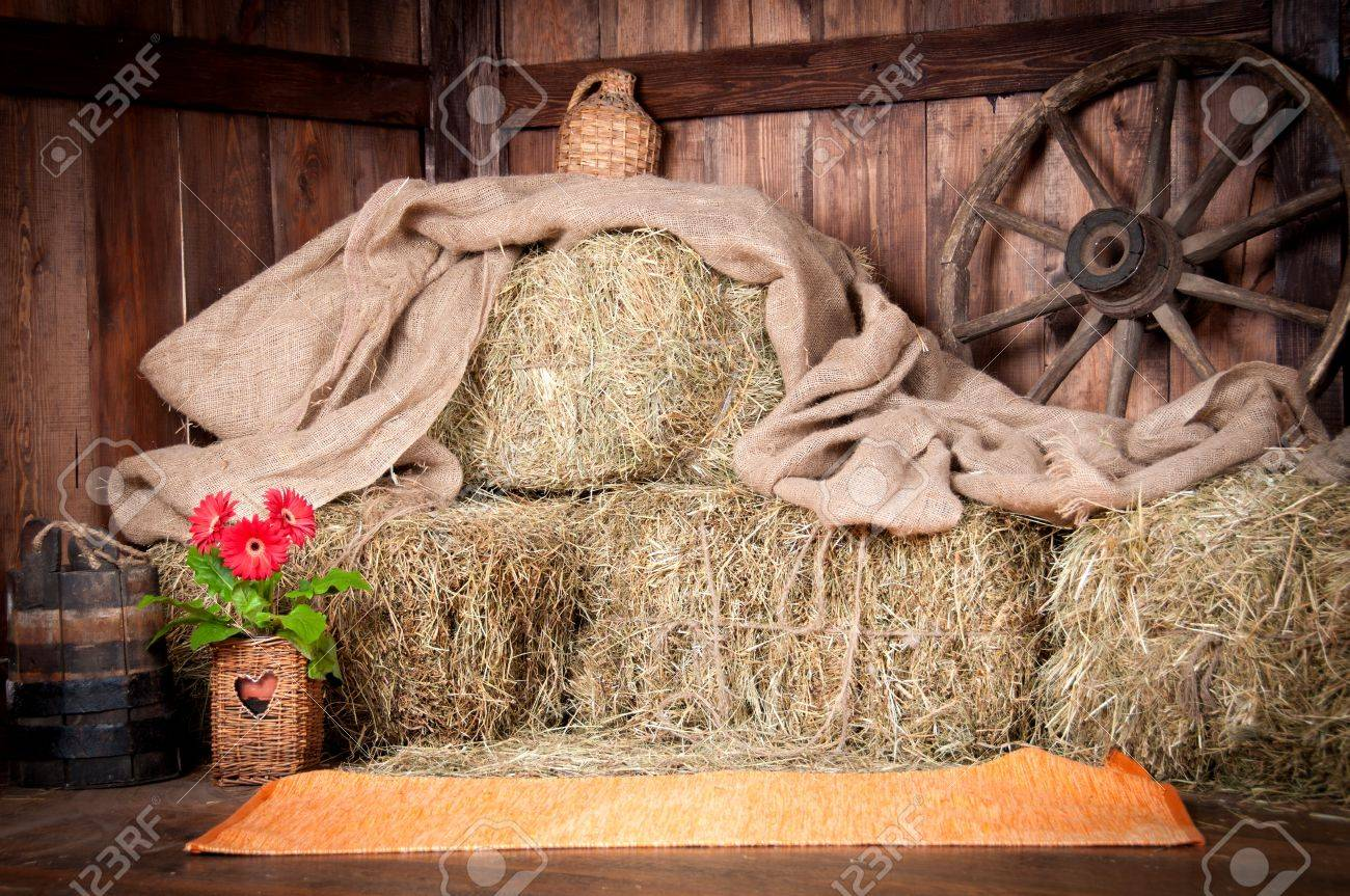The interior of the building of the village  Wheel, hay, bucket, bottle, cloth, a pot of flowers Stock Photo - 17998949