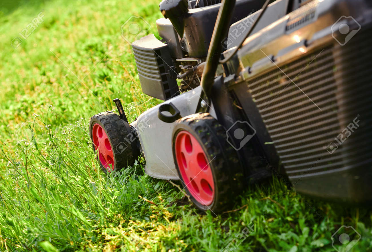 Lawnmow on the green grass. Housekeeping. Lawn care. Close up view of grass mower - 155257049