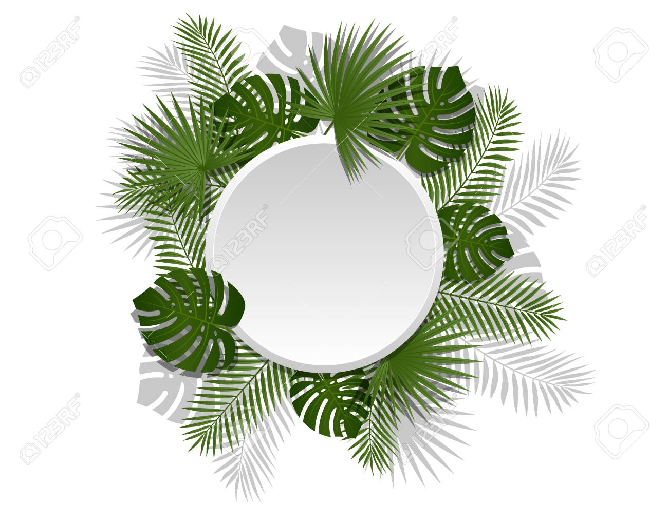 Green Summer Tropical Header With Exotic Palm Leaves And Plant Royalty Free Cliparts Vectors And Stock Illustration Image 78701324 Green leaf on white sand during daytime. green summer tropical header with exotic palm leaves and plant