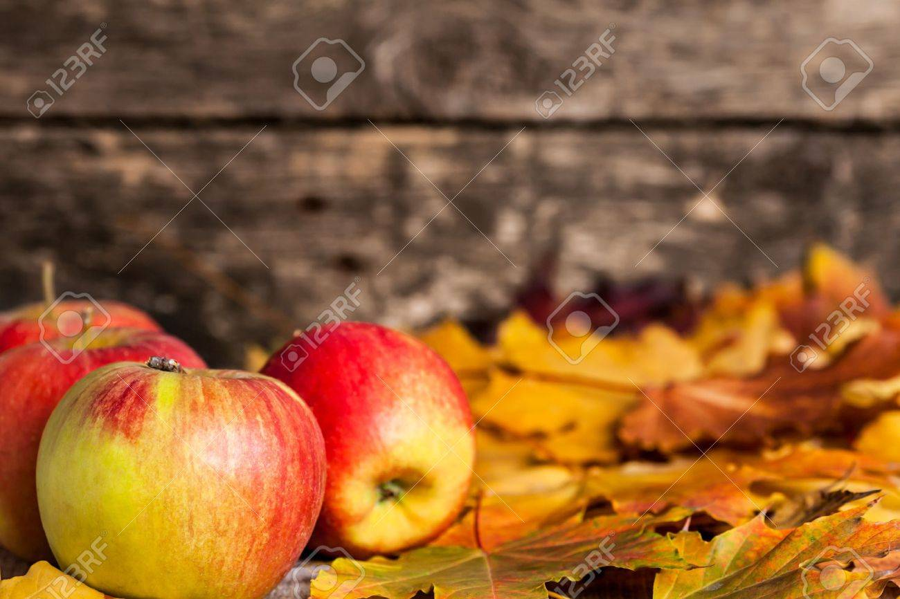 Autumn border from apples and maple leaves on wooden background Stock Photo - 13881558