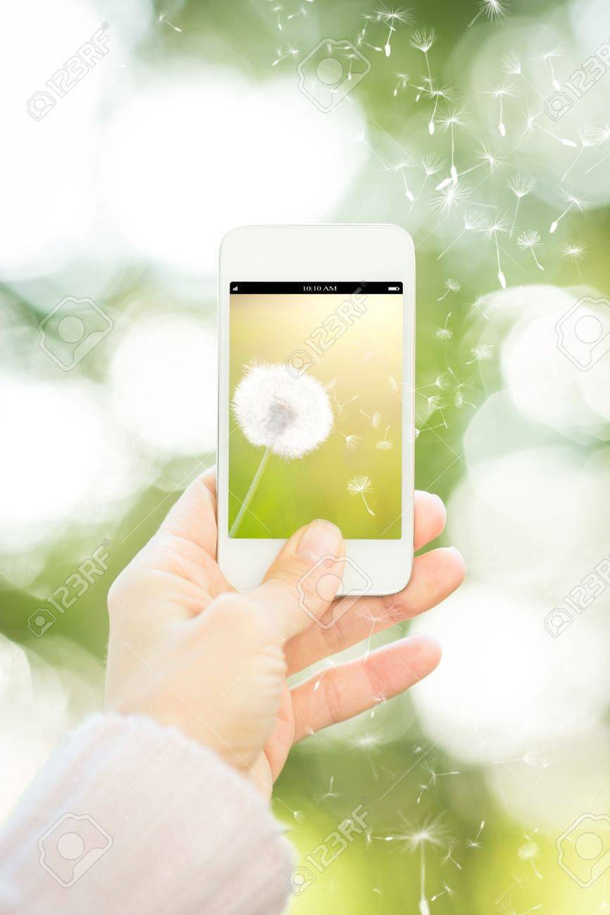 Woman holding smartphone with flower against spring green background  Ecology concept Stock Photo - 17642594