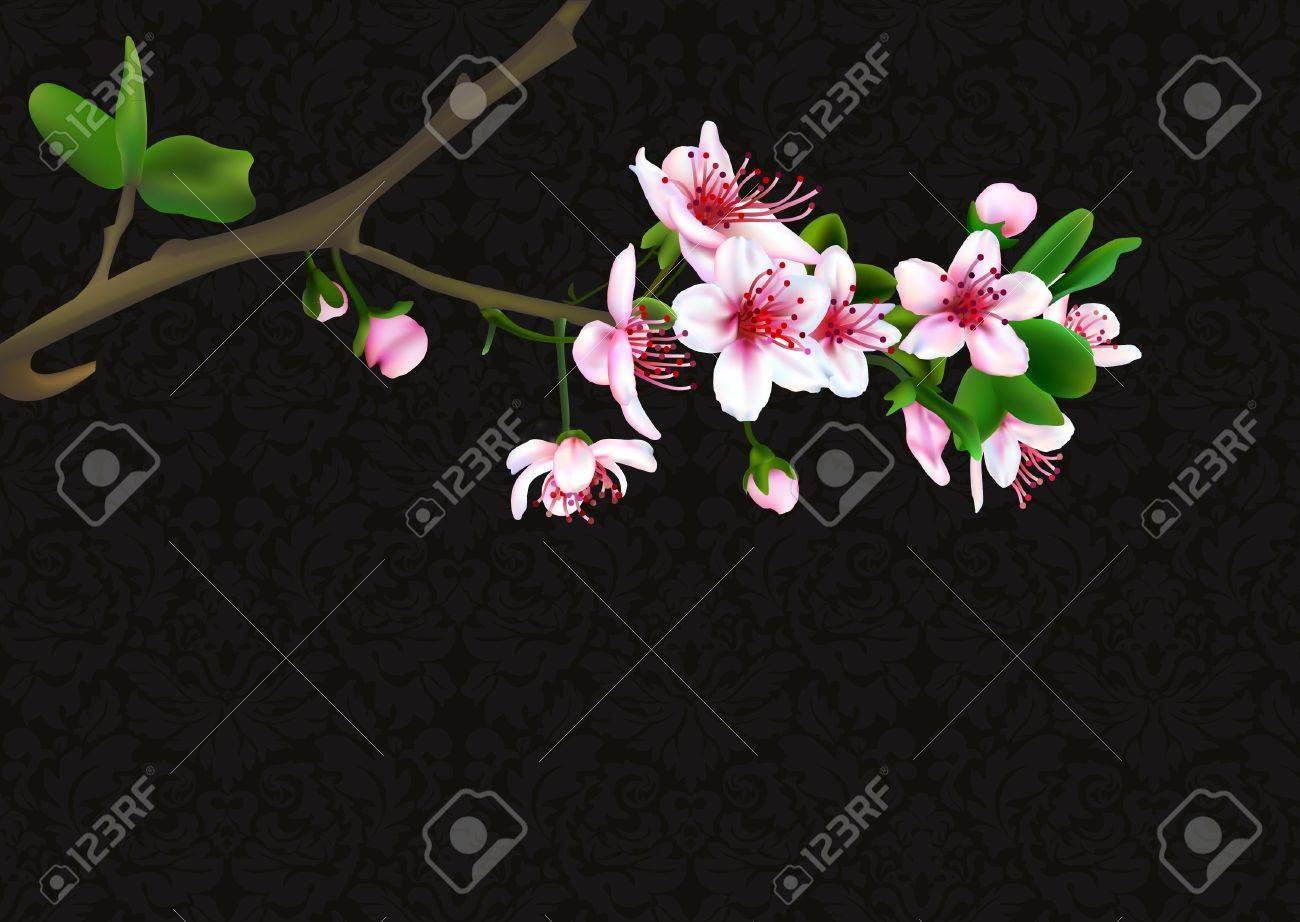 Sakura blossoms with retro background  vector illustration Stock Vector - 9221544