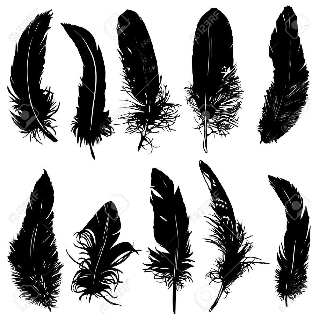 Bird Silhouette Feather Feather Silhouette Bird
