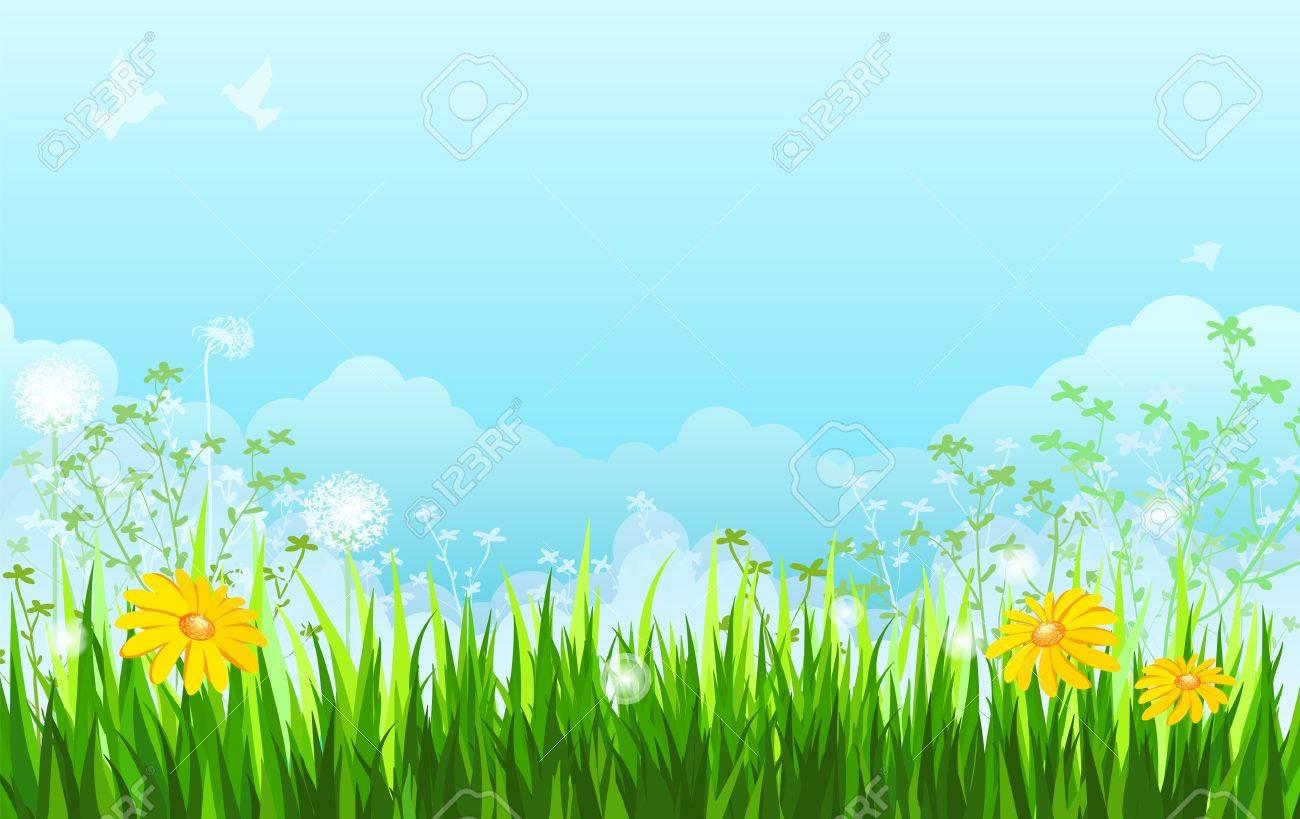 Summer background. Grass, flowers, sky. Stock Vector - 12941030