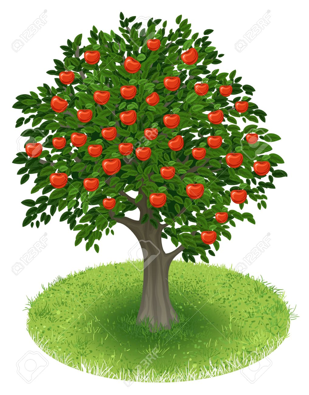 summer apple tree with red apple fruits in green field illustration rh 123rf com apple tree clipart free apple tree clipart png