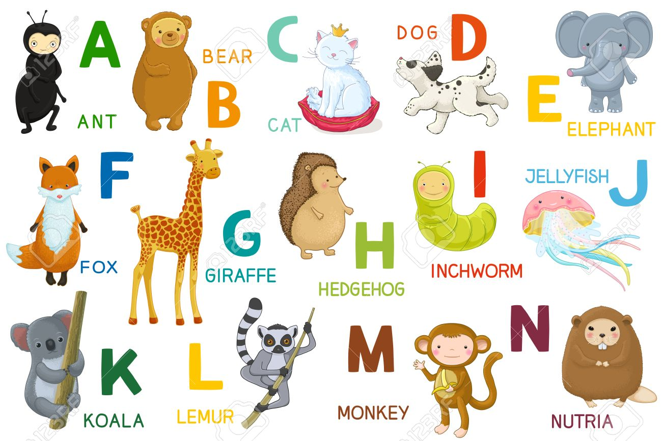 Animals ABC, Letter A N. Cartoon Characters, Animals And Alphabet